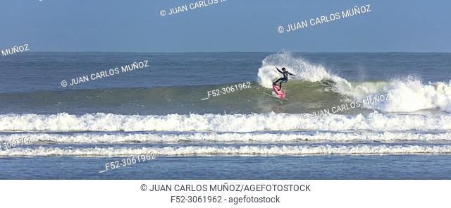 Surfing, La Salvé beach, Laredo, Cantabrian Sea, Cantabria, Spain, Europe