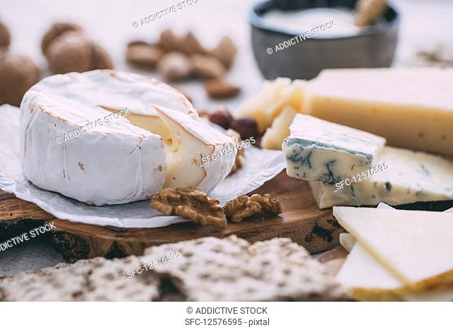 Cheese plate with nuts, grapes and bread