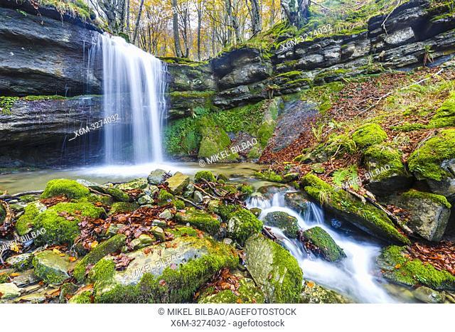 Waterfall in a beechwood. Portillo de la Sia Pass. Cantabria, Spain, Europe