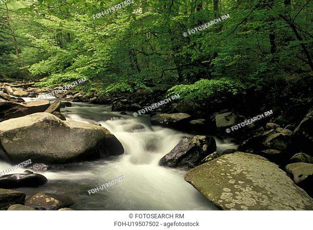 Oconaluftee River, Great Smoky Mountain National Park, NC, North Carolina