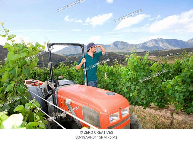 Winegrower