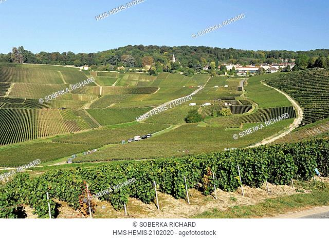 France, Marne, Hautvillers, vineyard village and abbey