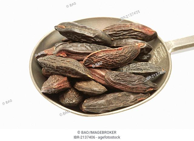 Tonka Beans (Dipteryx odorata), they are is said to have a hypnotic, erotic effect