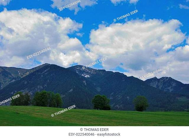 berg alm landschaft