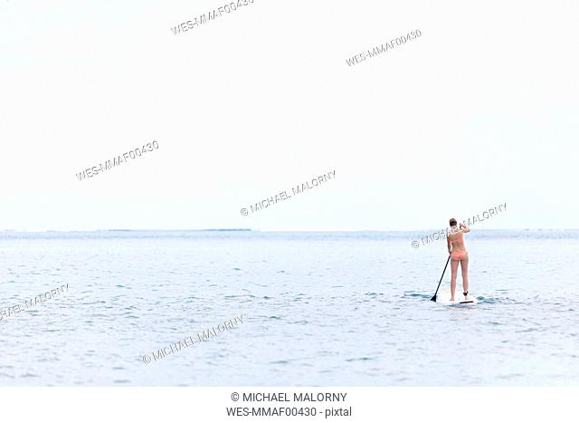 Mauritius, young woman on stand up paddling board