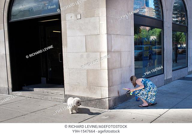 A woman in the Chelsea neighborhood of New York picks up after her dog