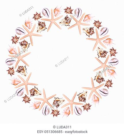 Round frame from different sea shells on a white background
