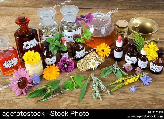 Tinctures with marigold, chicory, peppermint, Fraunmantel, St. John's wort, cornflower, agrimony, sage, yarrow, red coneflower, wormwood, herbal pharmacy