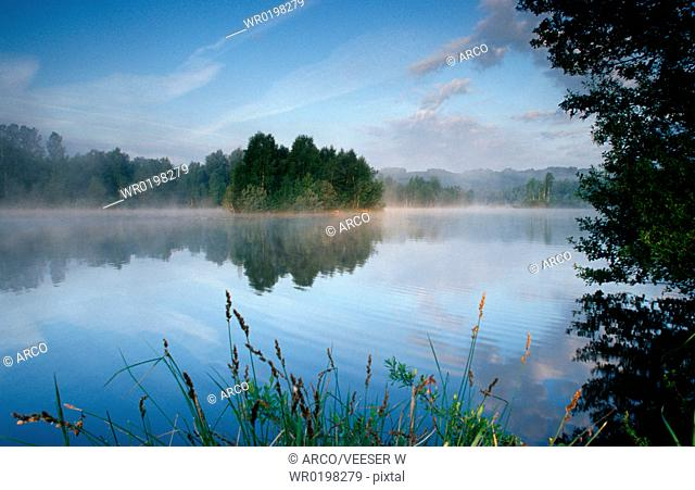 Moor, pond, in, morning, haze, Baden-Wurttemberg, Germany