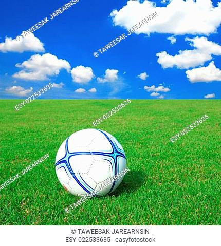 Soccer football field stadium