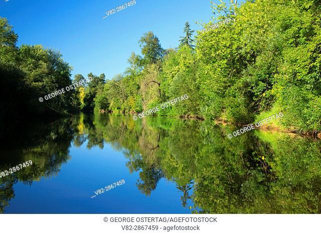 Yamhill River, Dayton Landing County Park, Yamhill County, Oregon