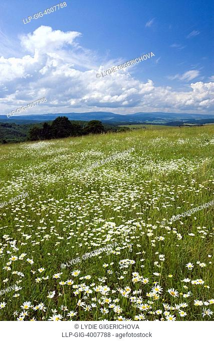 Landscape near Slavicin - Petruvka, Zlin district, Bile Karpaty, White Carpathian Mountains, protected landscape area, Moravia, Czech Republic, Europe