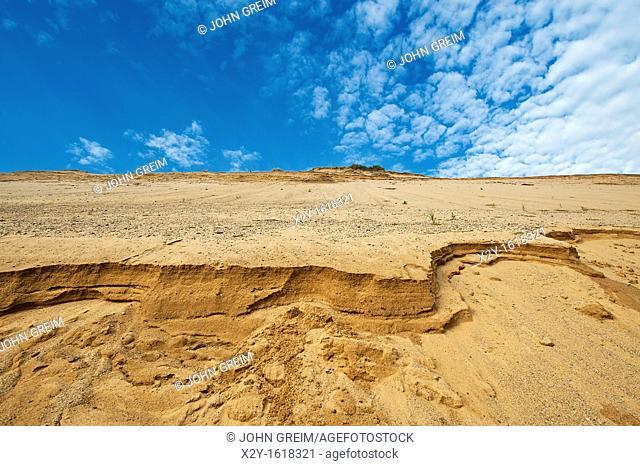 Steep dune cliff along the shoreline shows signs of continued erosion, Cape Cod National Seashore, Truro, Cape Cod, MA