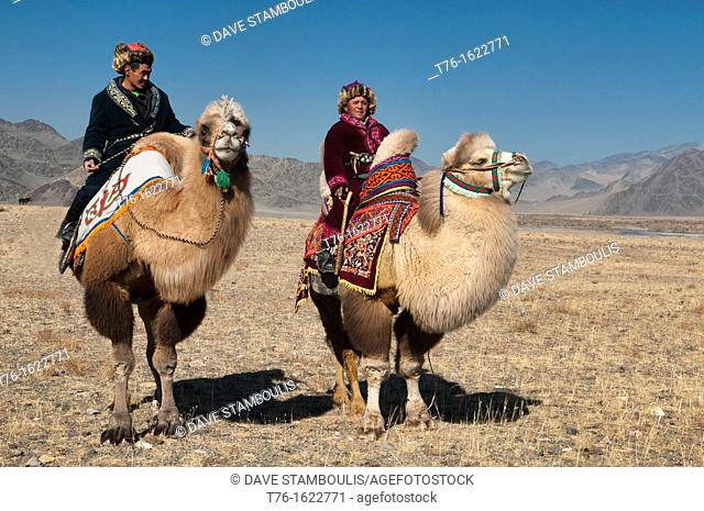 Bactrian camels on the Central Asian Steppe at the Kazakh Eagle Hunters' Festival in the Altai Region of Bayan-Ölgii in Western Mongolia