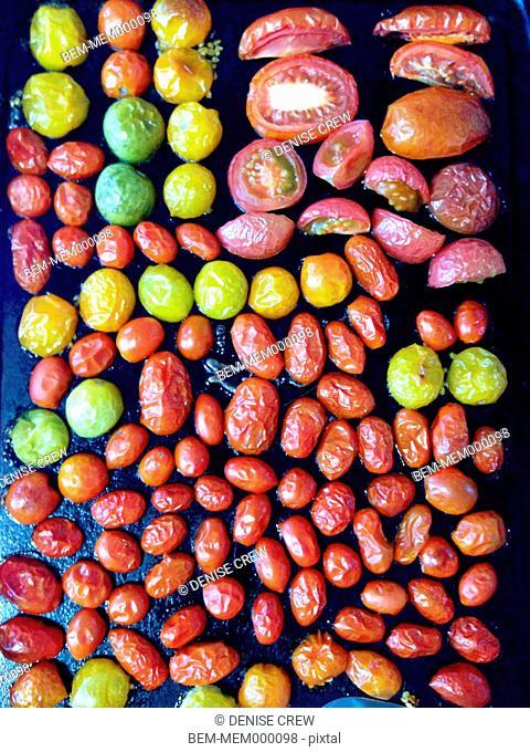 Variety of roasting tomatoes
