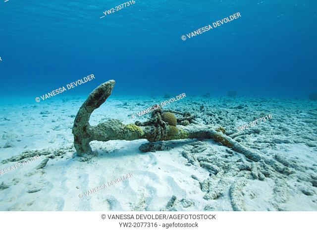 Anchor on the bottom of the sea. Caribbean Sea, Bonaire