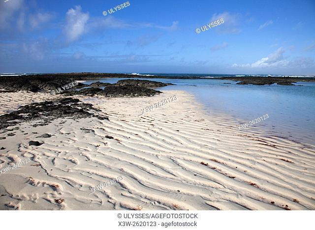 beach, El Cotillo, Faro del Toston area, Fuerteventura island, Canary archipelago, Spain, Europe