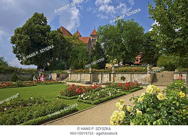 Rose garden at the Schlossberg with collegiate church in Quedlinburg, Saxony-Anhalt, Germany