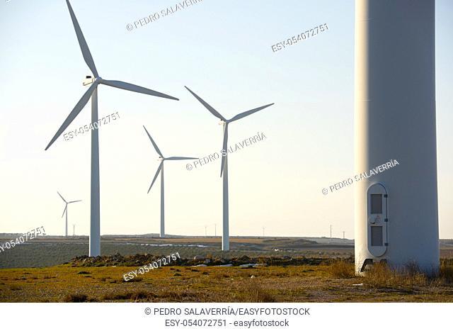 Windmilsl for electric power production, La Muela, Zaragoza Province, Aragon, Spain
