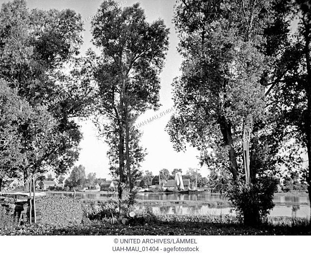 Blick durch Bäume auf das Dorf Elchwerder im Memeldelta, Ostpreußen, 1930er Jahre. View to the village Elchwerder in the Memel delta, East Prussia, 1930s