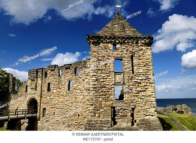 St Andrews Castle 13th Century south wall and square tower stone ruins exterier on the coast of the North Sea in Fife Scotland UK