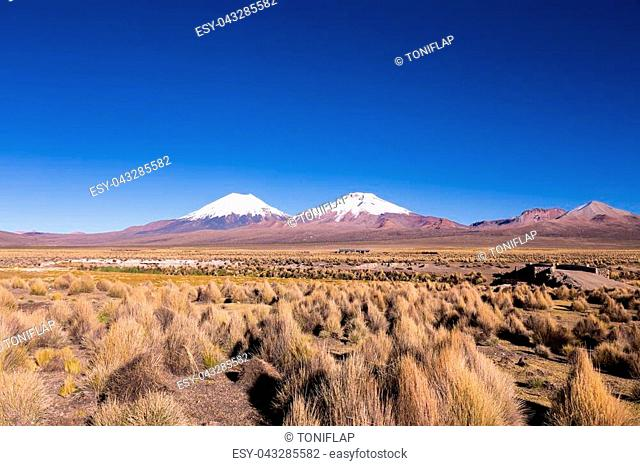Bolivian panoramic: High Andean tundra landscape in the mountains of the Andes. The weather Andean Highlands Puna grassland ecoregion