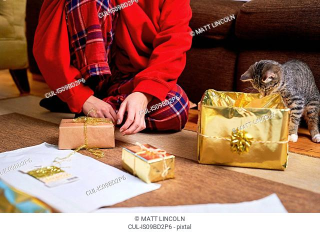 Young woman sitting on living floor wrapping gifts with curious cat, neck down view