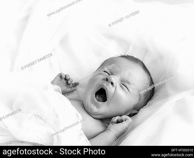 YAWNING BABY, NEWBORN IN ITS BASSINET, STUDIO PORTRAIT