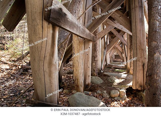 Built in the early 1900s, Trestle No. 16 crosses Black Brook along the old East Branch & Lincoln Railroad (1893-1948) in the Pemigewasset Wilderness of Lincoln