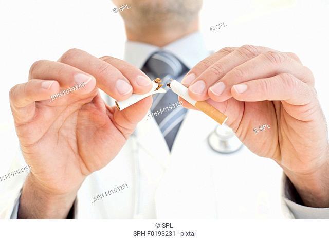 Male doctor breaking cigarette in two