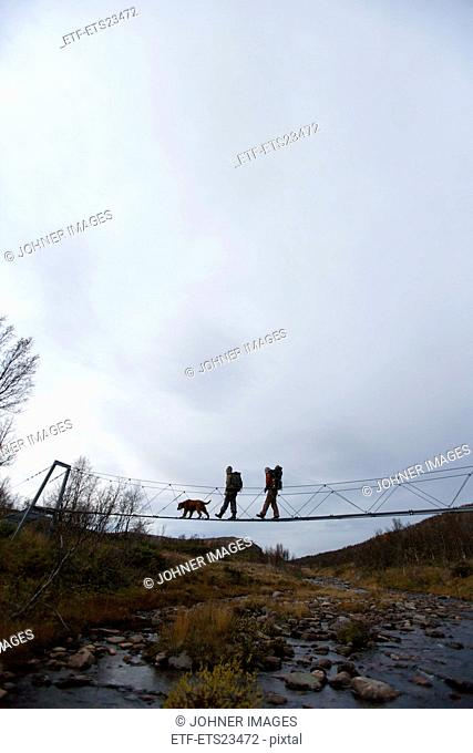 Silhouettes of hikers with dog walking through small suspension bridge