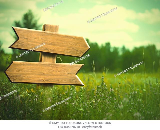 Beauty summer meadow. Rural landscape with empty road sign for your design