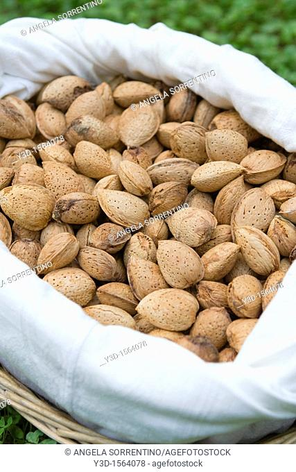 Natural almonds in a basket