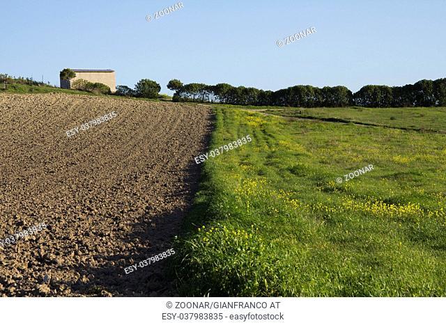 Campaign Quartu - Sardinia