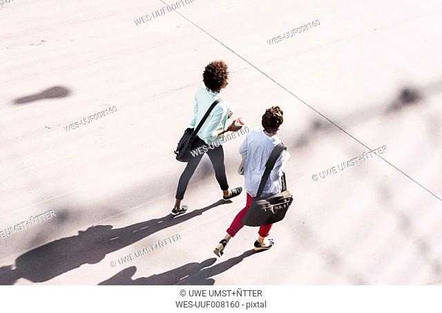 Back view of two walking businesswomen, seen from above