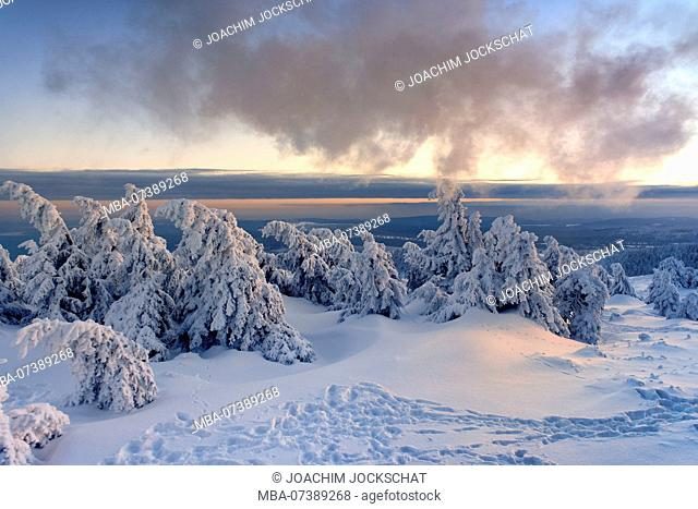 View from the Brocken Railway on the snowy winter landscape at the summit of the Brocken (1142m) in evening light, Harz, Saxony-Anhalt, Germany