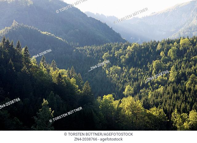 Sunset Illuminating Mixed Forests on Limestone Alps in Kalkalpen National Park. Austria