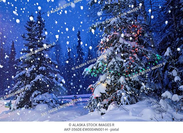Snow falling in the forest with a decorated and lit tree in the foreground