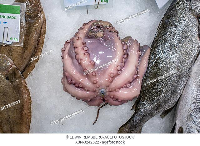 Octopus for sale in La Boqueria Food Market in Barcelona ,Spain