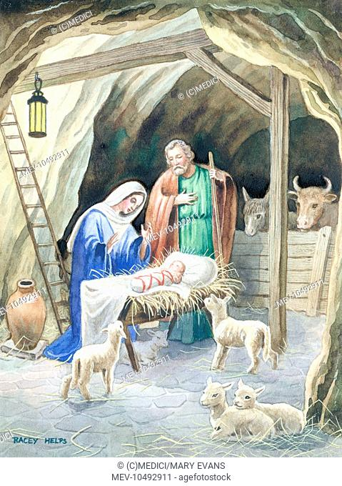 Christmas nativity scene with four lambs