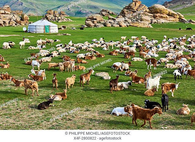 Mongolia, Bayankhongor province, nomad camp