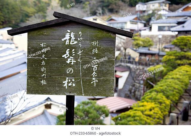 The over 200 years old Ryuzen pine on Miyajima, Japan