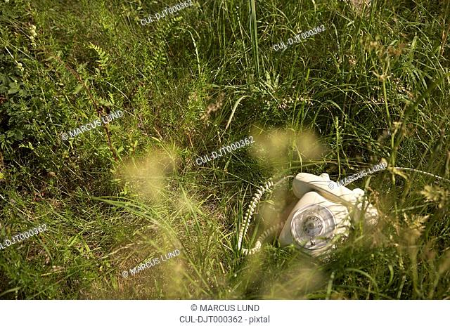 Old telephone lying in long grass