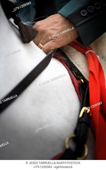 Rider hand the reins of a horse