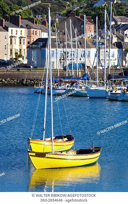 Ireland, County Fingal, Howth, Howth Harbor, boats