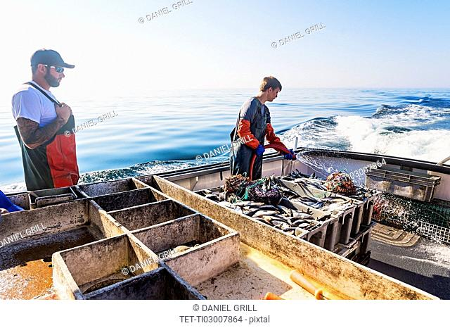 Two fishermen cleaning boat