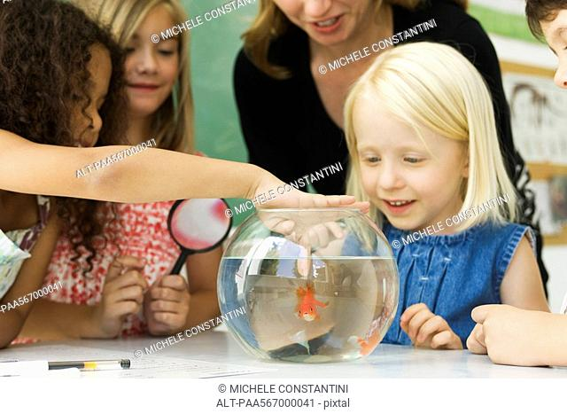 Elementary teacher and students gathered around goldfish bowl, one girl sticking finger in water
