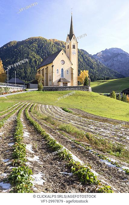 The parish church of Kartitsch in the Gailtal, Lienz district, Tyrol, Austria