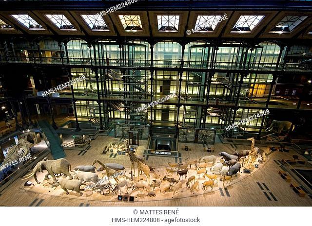 France, Paris, Jardin des Plantes, Museum National d'Histoire Naturelle, Grande Galerie de l'Evolution