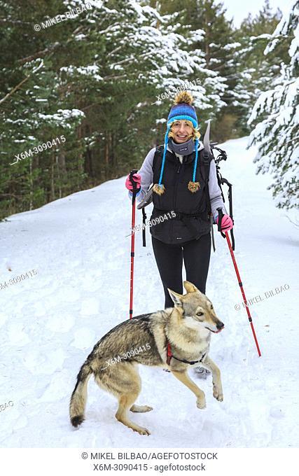 Mountaineer woman in the snow with a wolfdog. Las Lagunas Glaciares de Neila Natural Park. Burgos, Castile and Leon. Spain, Europe